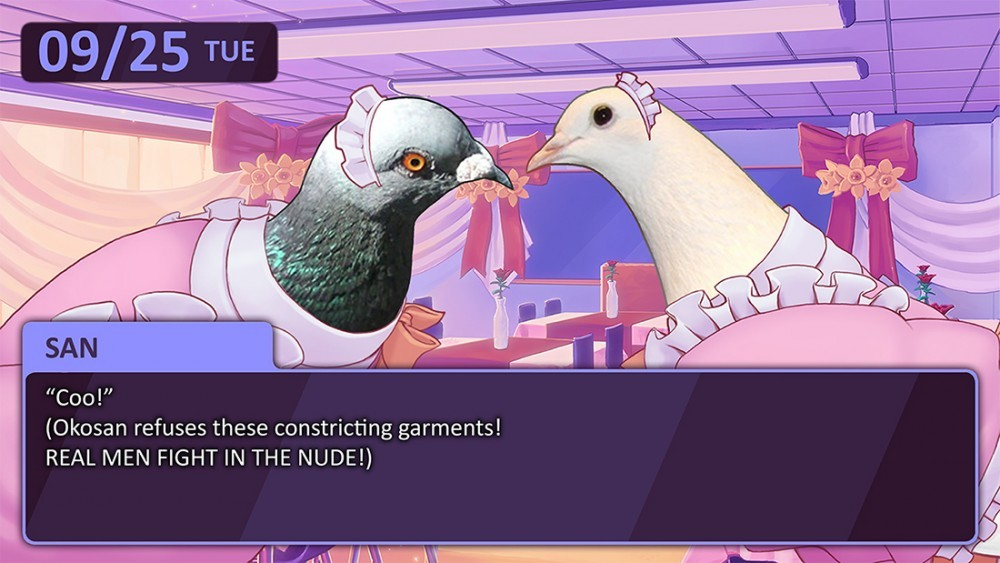Hatoful Boyfriend - Screen 1 copy