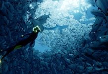 ABZU Combines Journey and Ecco