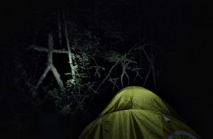 Blair Witch (Movie) Review 8
