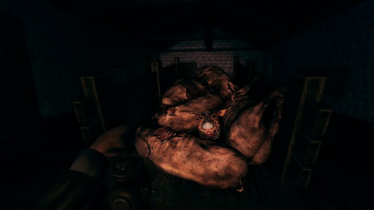 Amnesia: Collection Coming to PlayStation 4 1