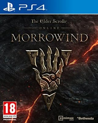 Elder Scrolls Online: Morrowind Review - Going Back in Time 7