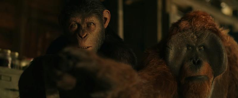 Karin Konoval Talks War for the Planet Planet of the Apes - Interview 4