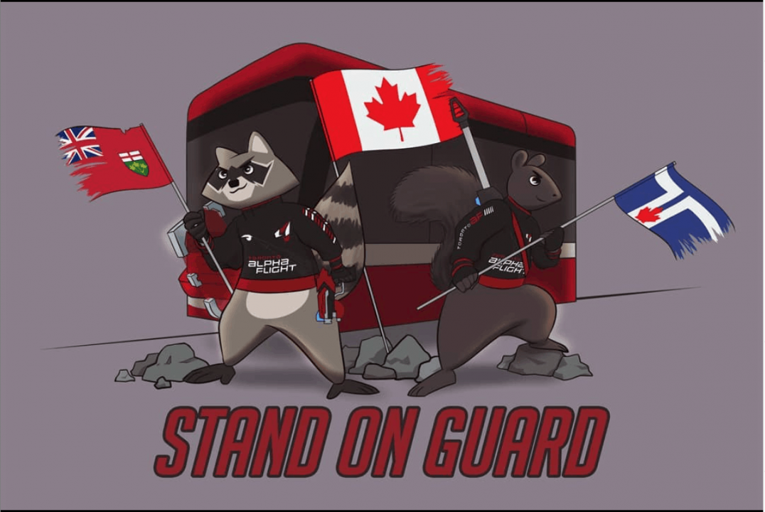Screen Shot 2019 05 30 at 5.21.59 PM - Team Canada Overwatch World Cup Shortlist Spotlight: Richard 'Root Bear' Ng